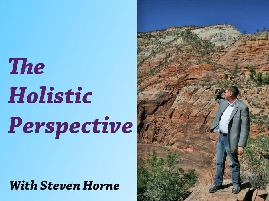 The Holistic Perspective